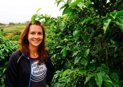 Kaffeefarm in Costa Rica